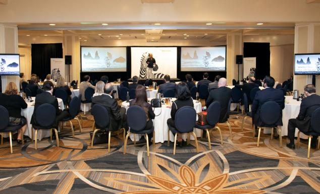 Investec Miami Conservation Awareness: Investec AM's Commitment with Art And Protecting Wild Life