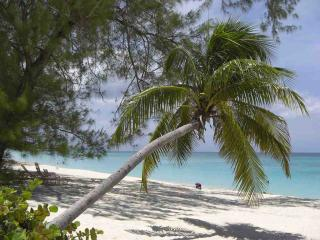 Cayman Islands Signs FATCA Agreement Increasing Pressure on Other Fund Domiciles