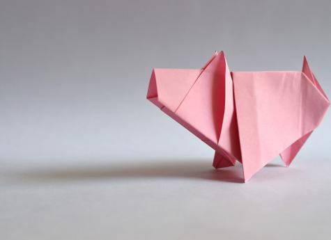What Can Investors Expect From China in Year of the Pig?